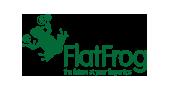 Partner - Flat Frog